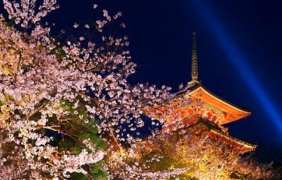 清水寺ライトアップ3