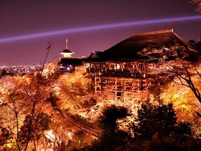 清水寺の桜のライトアップです
