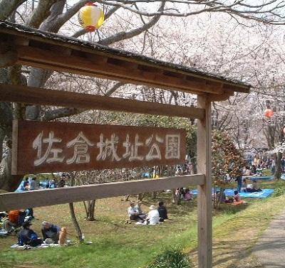 佐倉城址公園で桜の花見も楽しみましょう