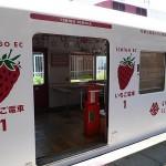 貴志川観光いちご狩り園イチゴ電車