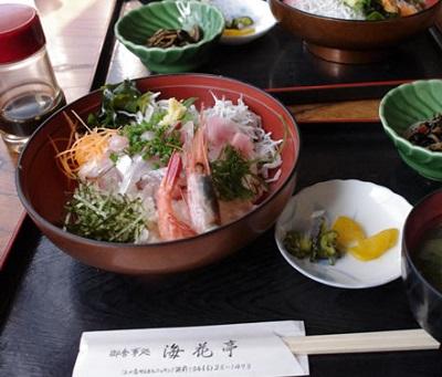 海花亭アジと生しらす丼