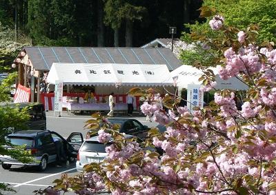 比叡山延暦寺西塔の萌桜会