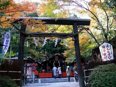 野々宮神社紅葉