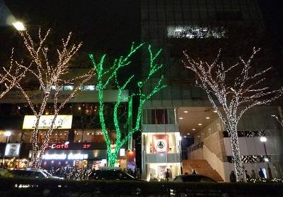 表参道イルミネーション緑のライトアップ