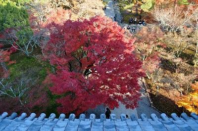 南禅寺三門からの眺め