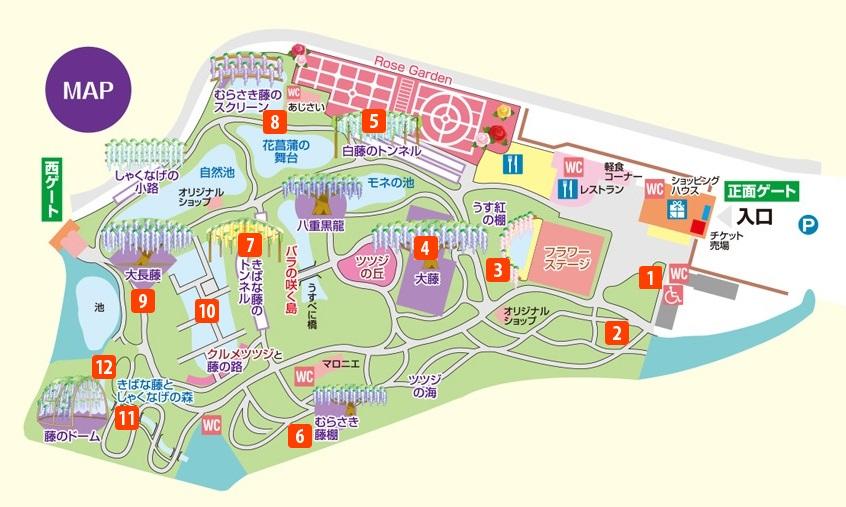 足利フラワーパークのイルミネーションマップ