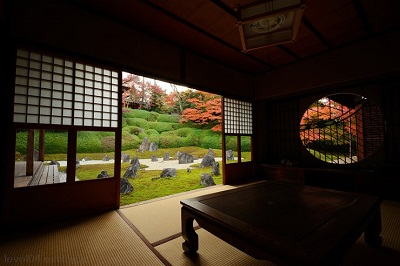 東福寺光明院紅葉