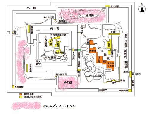 二条城桜見どころマップ