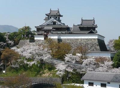 福知山城桜