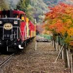 トロッコ列車秋