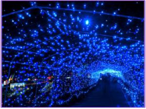 光のページェント~TWINKLE JOYO 2014~