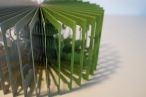 360°ブックジャックと豆の木1